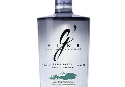 Gin gvine