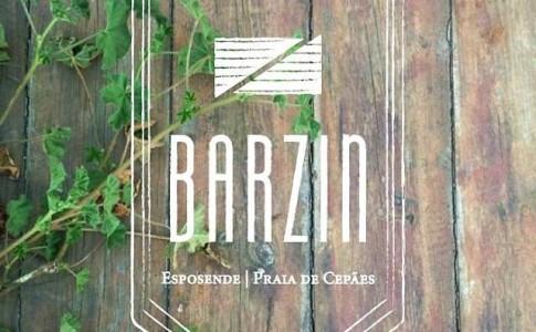 barzin