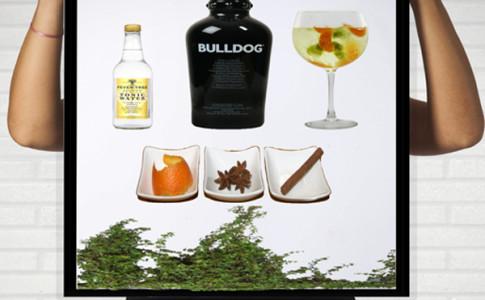 Gin-Laranja