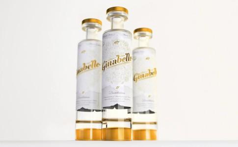 ginabelle-nova imagem