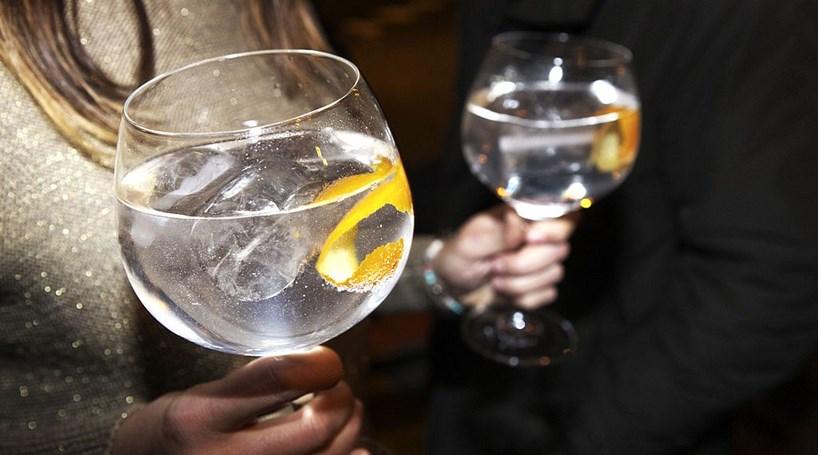 gin-noticia