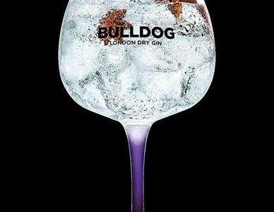 BullDog Gin Classic Serves Warming Spice