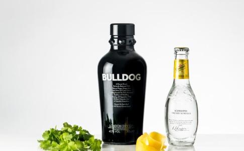 Bullldog
