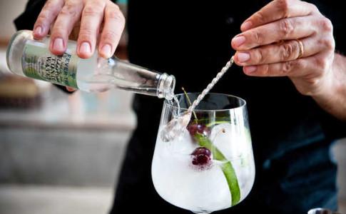 dez gins essenciais